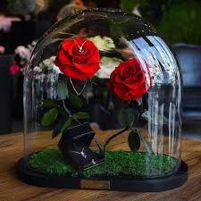 The Forever Rose Real Enchanted Rose Lasts 3 Years Without Water Or Sunlight