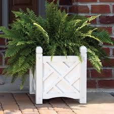 solid wood chippendale planter box hayneedle