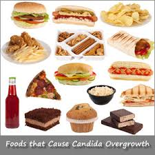 candida foods to eat food recipe