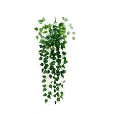 Hanging Plant Hanging Plants Artificial Promotion Shop For Promotional Hanging