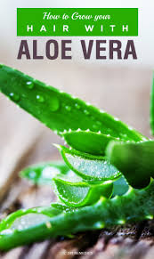 How To Encourage Hair Growth How To Grow Your Hair With Aloe Vera