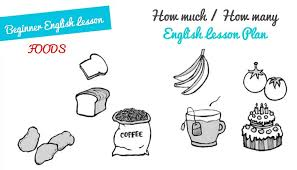 free english lesson plans how much how many esl lesson plan a1