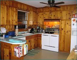 Restore Kitchen Cabinets Refinish Kitchen Cabinets Knotty Pine Great Ideas Of Refinish