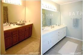 updating bathroom ideas bathroom updates ladyroom club
