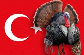 happy thanksgiving a traditional american feast with islamic bird