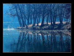 blue reflections wallpapers forest reflections trees misty water blue hd wallpaper for desktop