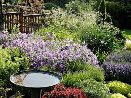 English Cottage Gardens Photos - english mixed border cottage gardens mount hood gardens inc