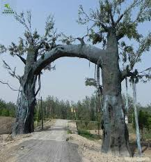 ficus topiary wholesale topiary suppliers alibaba
