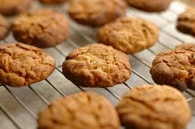 ginger ginger u0026 cardamom biscuits cygnet kitchen