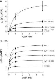 how atp inhibits the open katp channel jgp