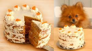 carrot cake for dogs recipe paddington u0027s pantry youtube