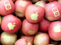 apple japan slapping an apple logo on apples edible apple