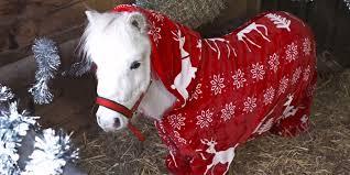 horse foursie u2014 christmas pajamas for horses
