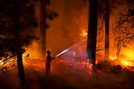 California Wildfires 2007 Environmental Effects by How Fire Once A Friend Of Forests Became A Destroyer