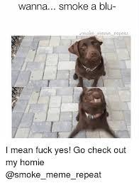 Dog Text By Memeemma Meme - 25 best memes about smoking meme smoking memes