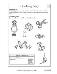 1st grade 2nd grade kindergarten science worksheets is it a