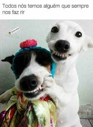 Dog Smiling Meme - pin by luh assis on memes pinterest memes humour and meme