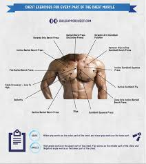 chest exercises for every part of the chest buildupperchest com