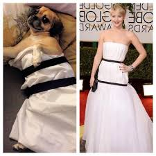 Lawrence Meme - jennifer lawrence s dress inspires lawrencing meme