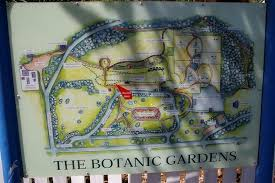 Wagga Wagga Botanical Gardens Wagga Wagga Botanical Gardens