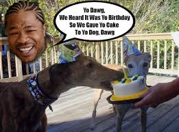 Yo Dog Meme - gallery happy birthday xzibit here s a bunch of memes of you