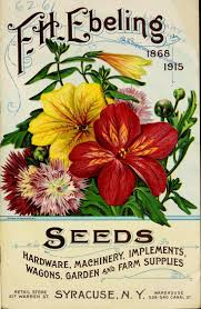 flower seed packets 455 best seed packet and catalog images on flower
