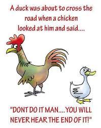 Chicken Meme Jokes - chicken puns