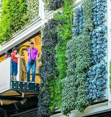 build your own living wall contemporary decoration how to a