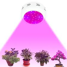 indoor flowering plants 1pcs 300w ufo led grow light for medical plants vegetative and