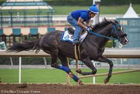 stable notes santa anita park