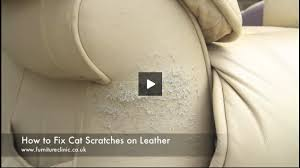 Repair Scratches On Leather Sofa How To Repair Cat Scratches On Leather Furniture Clinic