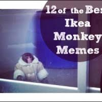 Ikea Monkey Meme - ikea 200x200 jpg