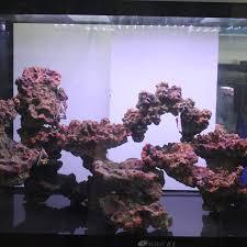 Live Rock Aquascaping Ideas Medium Sized Fish Tank Aquarium Landscaping Plants Decorative