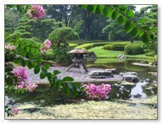 Transform Your Backyard backyard landscaping ideas transform your backyard