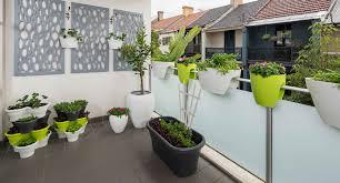 turn your small balcony into an edible vertical garden better