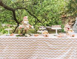 Baby Shower Outdoor Ideas - ali fedotowsky u0027s blush baby shower inspired by this