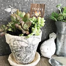 diy decoupage succulent planter teacher gift pebbles inc