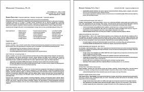 Skill Set In Resume Examples by Job Search Strategies Executive Resume Services Part 2