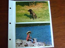 4 x 6 photo album refill pages dalee book a bindery source for albums frames binders and refills