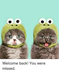 Welcome Back Meme - welcome back you were missed meme on sizzle