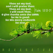 psalm of thanksgiving psalms 118 19 29 kjv blessed be he that cometh in the name of
