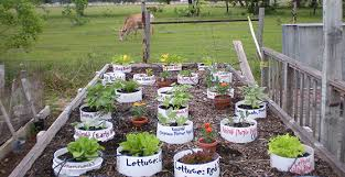 container gardening u2013 vegetables that grow in containers