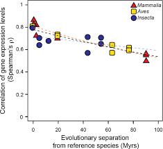 evidence for a common evolutionary rate in metazoan