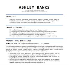 resume exle word document