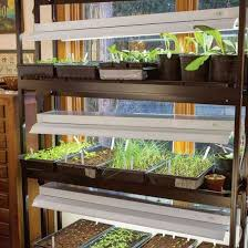 best grow lights for vegetables diy grow lights for starting seeds indoors read here http www