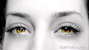 Eyelash Extensions Natural Look 3d 6d Volume Lash Extensions Youtube