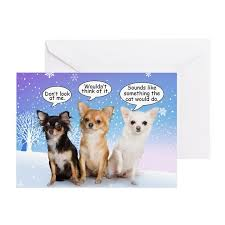 chihuahua cards pk of 10 by shopdoggifts