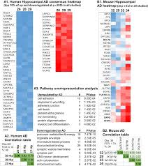 transcriptional signatures of brain aging and alzheimer u0027s disease