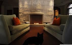 black cat in the living room 4k hd desktop wallpaper for 4k