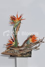 shop rustic birds of paradise driftwood table vase display